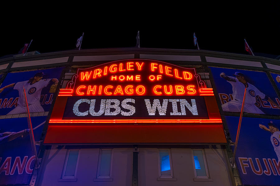 Cubs Win Photograph  - Cubs Win Fine Art Print