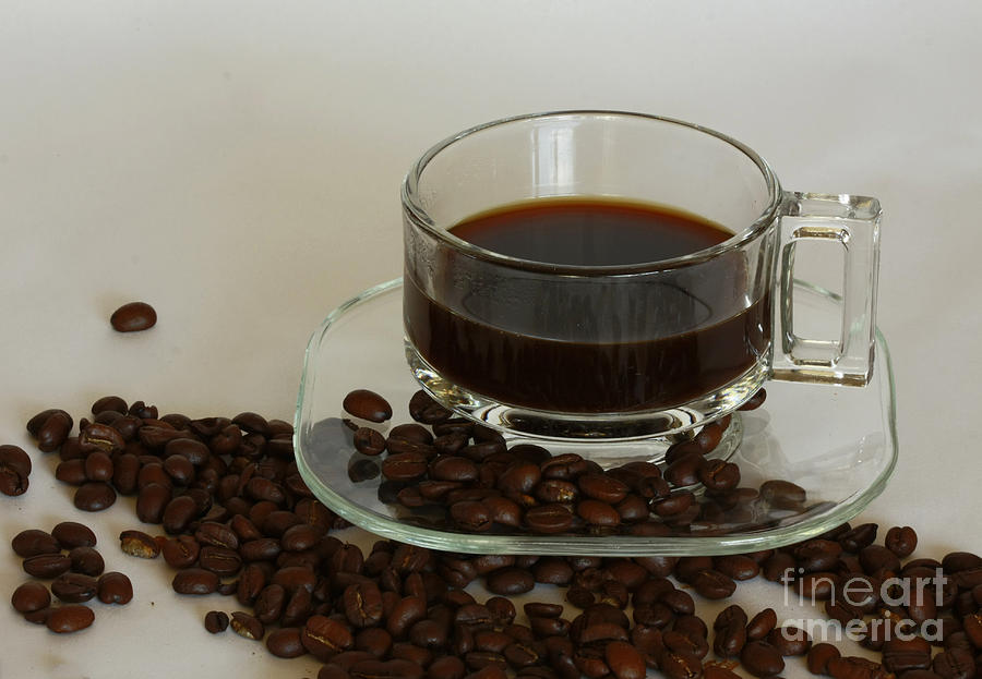 Cup Of Java Photograph