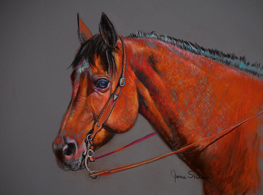 Horse Drawing Drawing - Curious by James Skiles