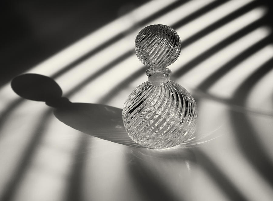 Glass Art Photograph - Curvatures 3...shadows by Tom Druin