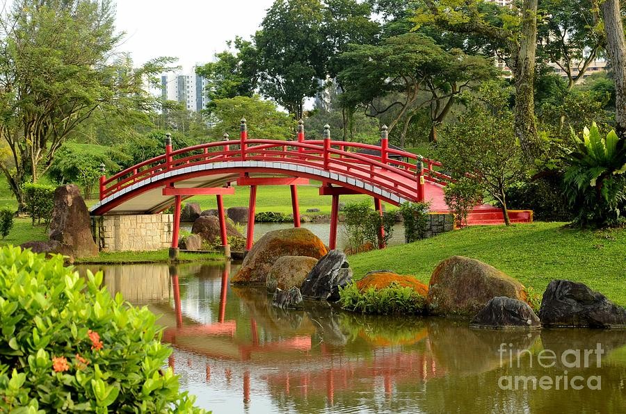 Curved Red Japanese Bridge And Stream Photograph