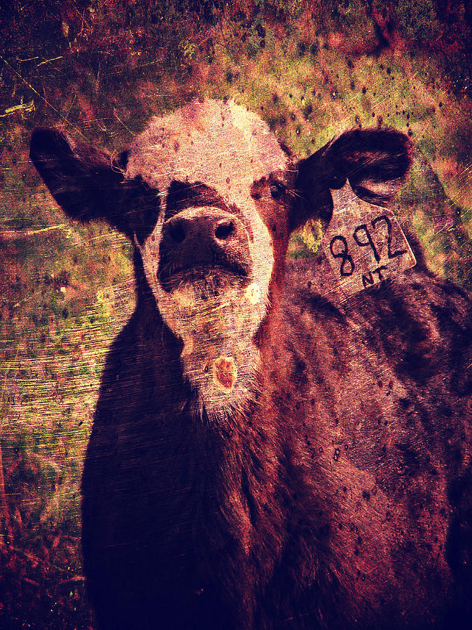 Cute Calf Grunge Digital Art  - Cute Calf Grunge Fine Art Print