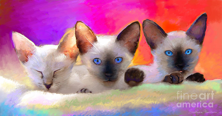 Cute Siamese Kittens Cats  Painting  - Cute Siamese Kittens Cats  Fine Art Print