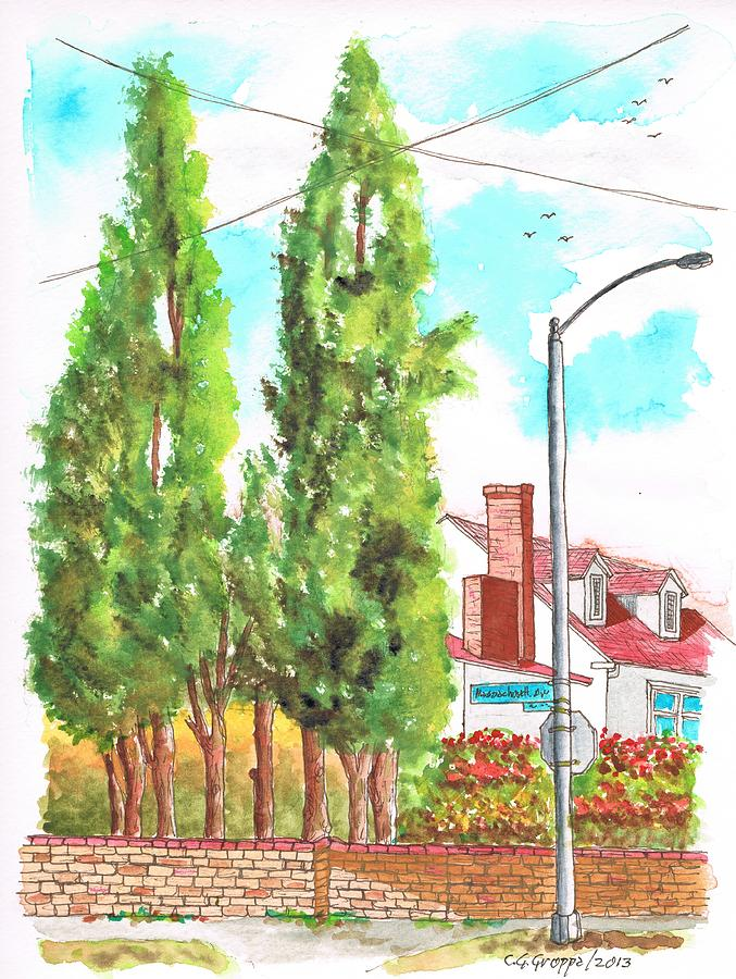 Cypresses In Massachusett Ave - Westwood - California Painting