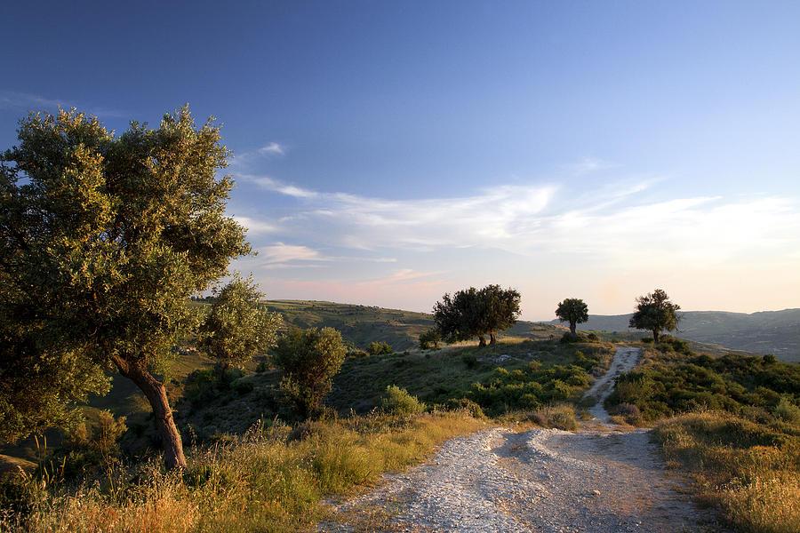 http://images.fineartamerica.com/images-medium-large-5/cyprus-landscape-liz-eddison.jpg
