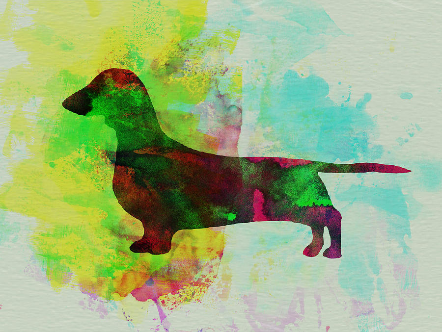 Dachshund Watercolor Painting  - Dachshund Watercolor Fine Art Print