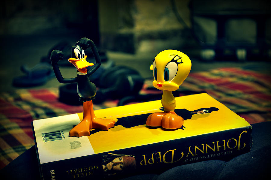 Daffy Tweety And Johnny Photograph