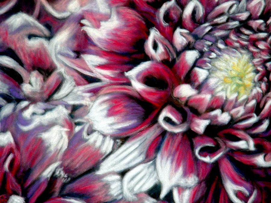 Dahlias In Pastel Pastel  - Dahlias In Pastel Fine Art Print