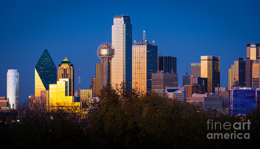 Dallas Photograph - Dallas Skyline by Inge Johnsson