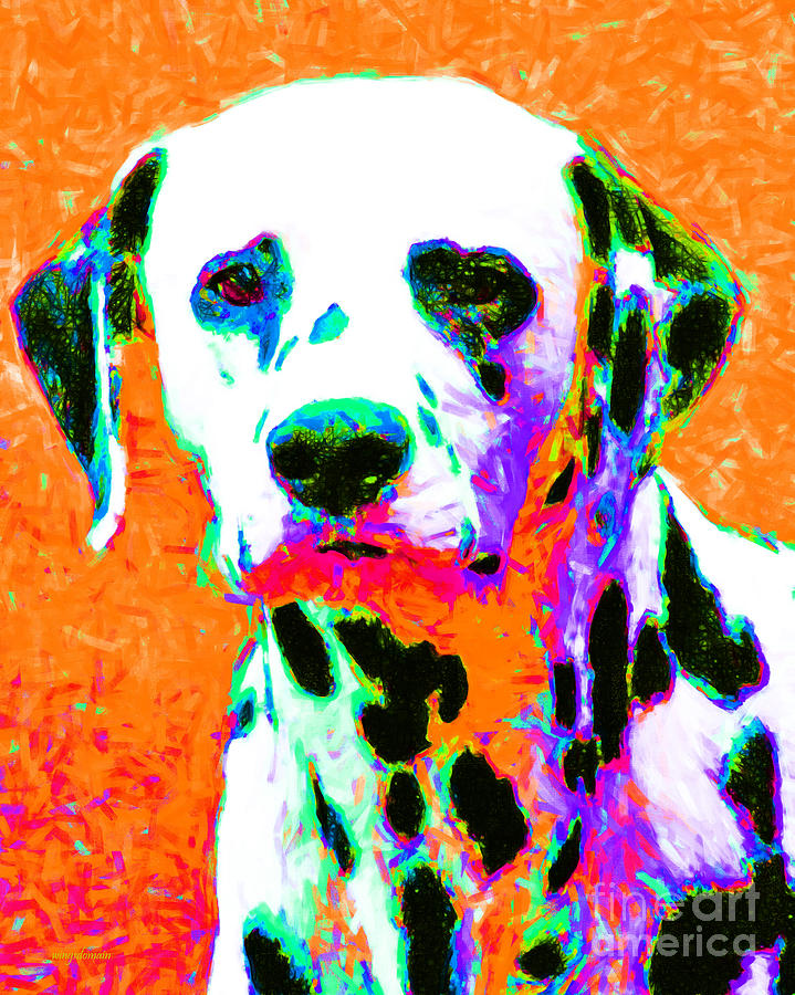 Dalmation Dog 20130125v2 Photograph  - Dalmation Dog 20130125v2 Fine Art Print