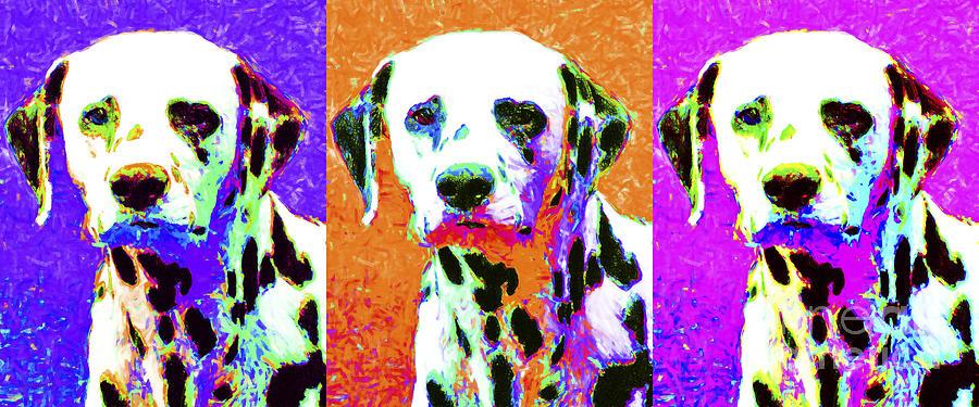 Dalmation Dog Three 20130125 Photograph