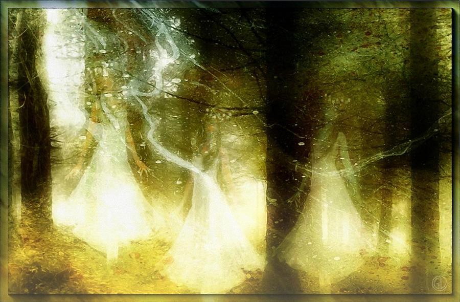 Forest Digital Art - Dance Of The Fairies by Gun Legler