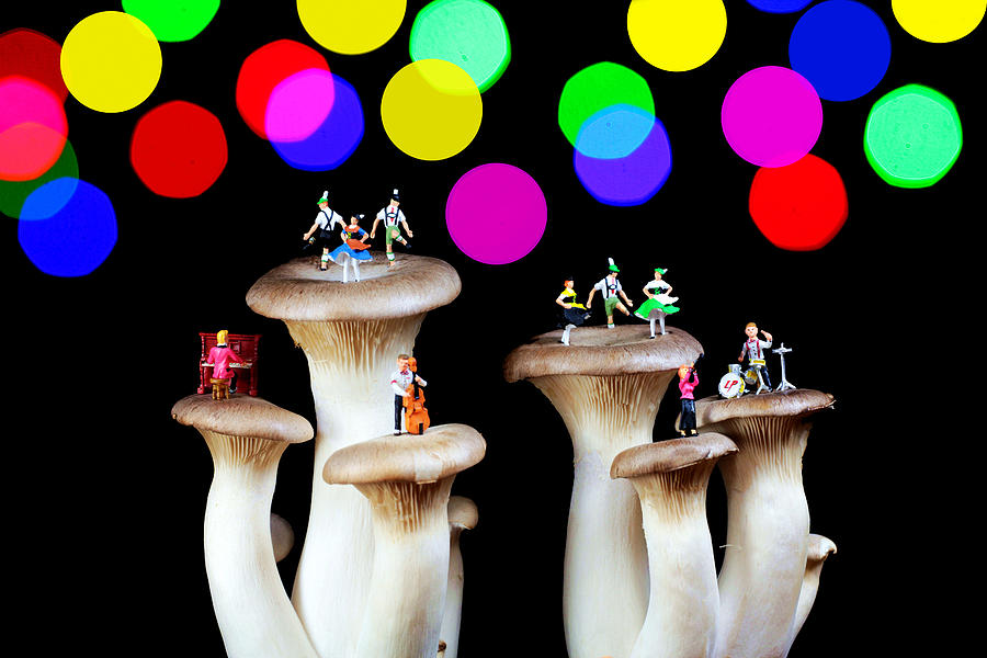 Dancing On Mushroom Under Starry Night Photograph