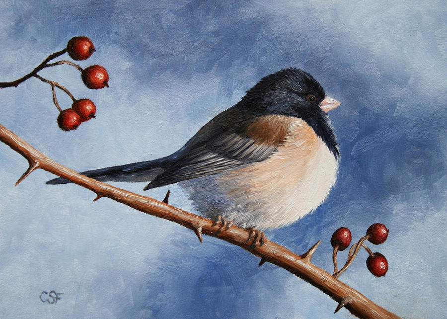Dark-eyed Junco Painting  - Dark-eyed Junco Fine Art Print