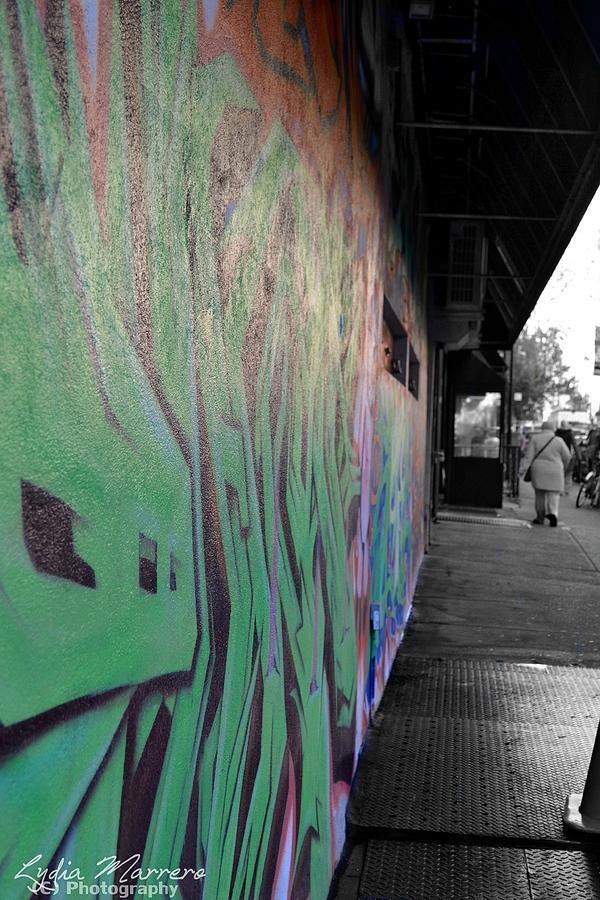 Dash Of Color Photograph