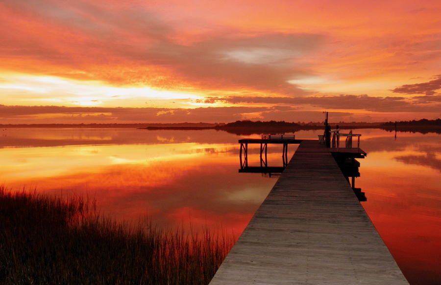 Orange Photograph - Dawn Of New Year by Karen Wiles