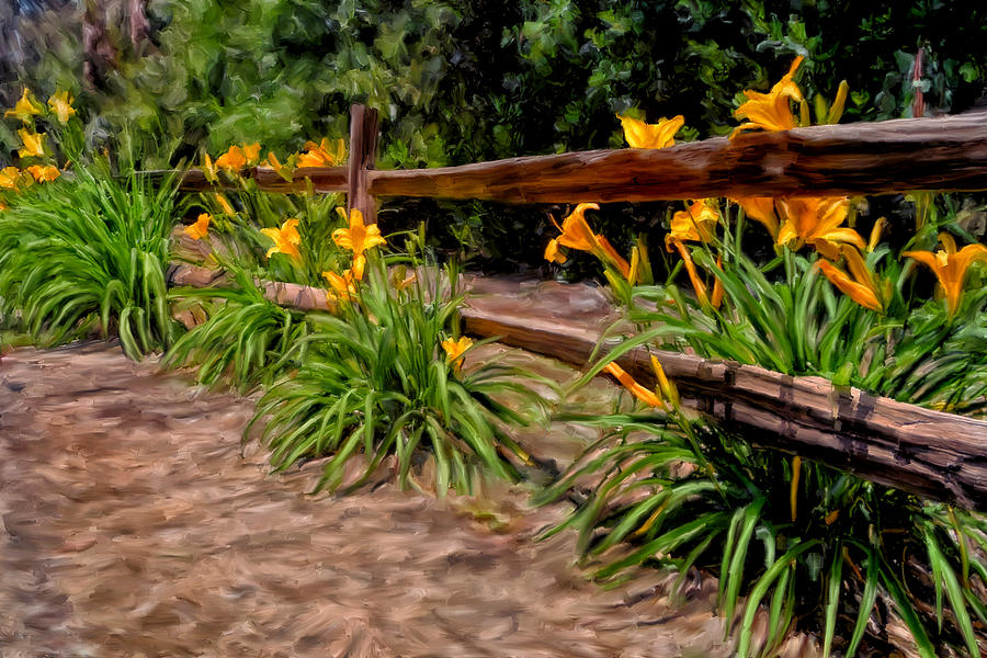 Flowers Painting - Day Lilies by Michael Pickett