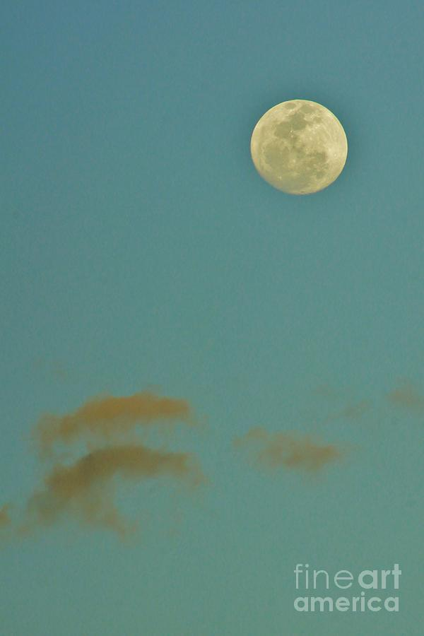 Day Moon Photograph