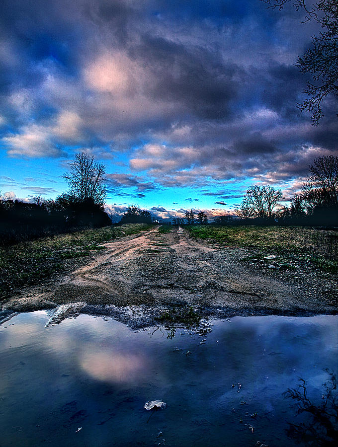 Puddle Photograph - Dead End by Phil Koch