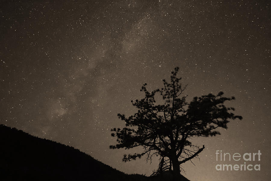 Deep Deep Deep Into The Night Photograph