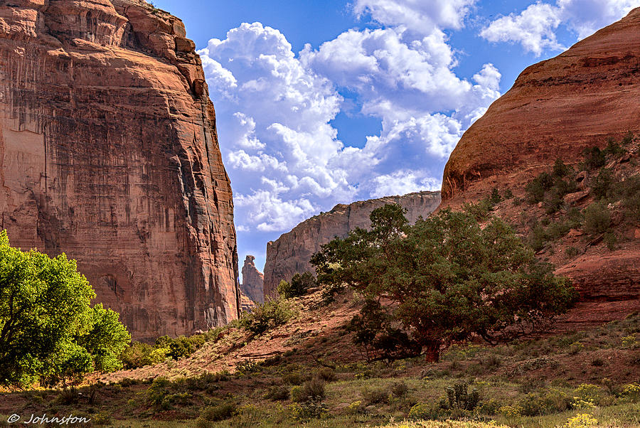 Deep In Canyon De Chelly Digital Art  - Deep In Canyon De Chelly Fine Art Print