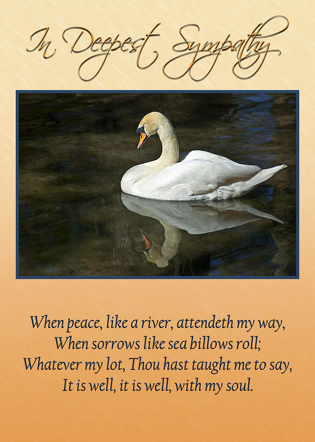 Swans Photograph - Deepest Sympathy Card by Carolyn Marshall
