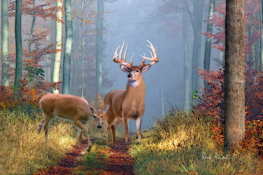 deer art painting whitetail deer artwork  north american wildlife prints dale kunkel endeerment hunting
