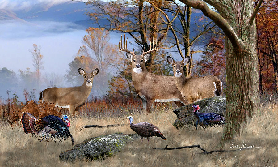 deer art painting whitetail deer artwork dale kunkel november whitetails turkey hunting