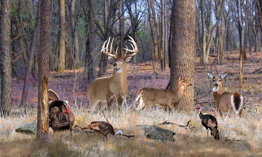 deer art pictures wild...