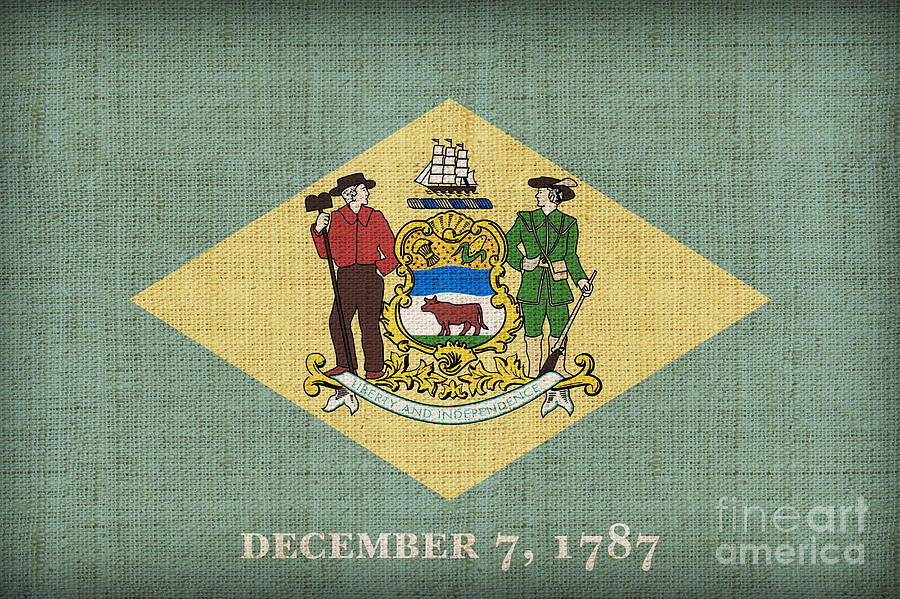 Delaware Painting - Delaware State Flag by Pixel Chimp