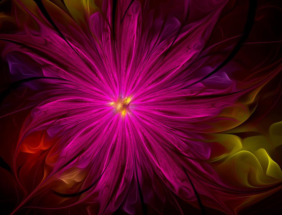Delicate Flowers Digital Art
