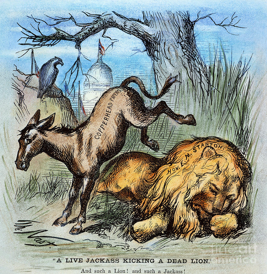 Democrat Donkey 1870 Drawing  - Democrat Donkey 1870 Fine Art Print