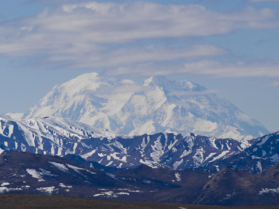 Denali  Photograph