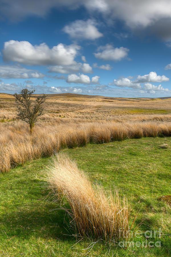 Clouds Photograph - Denbigh Moors by Adrian Evans