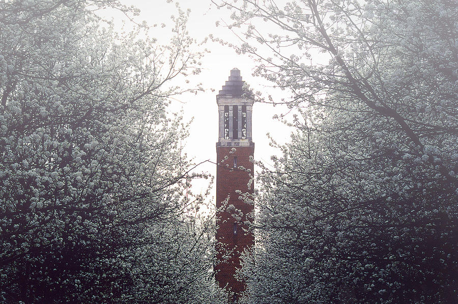 University Of Alabama Photograph - Denny Chimes Foggy Blossoms by Ben Shields