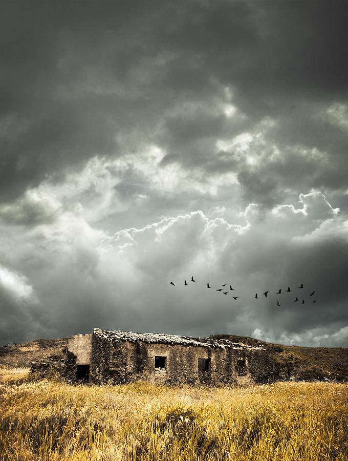 Country Photograph - Derelict Rural Building by Amanda Elwell