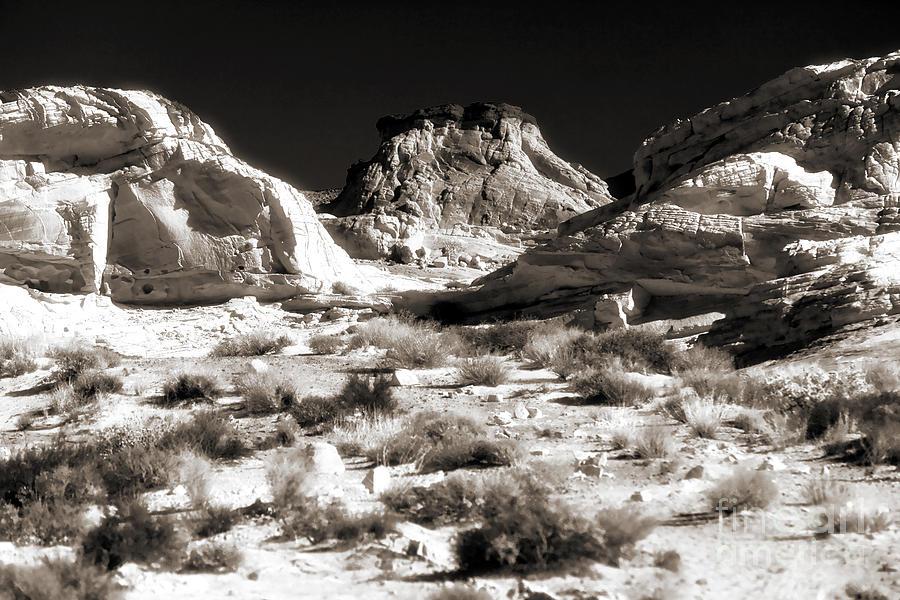 Desert Altar Photograph
