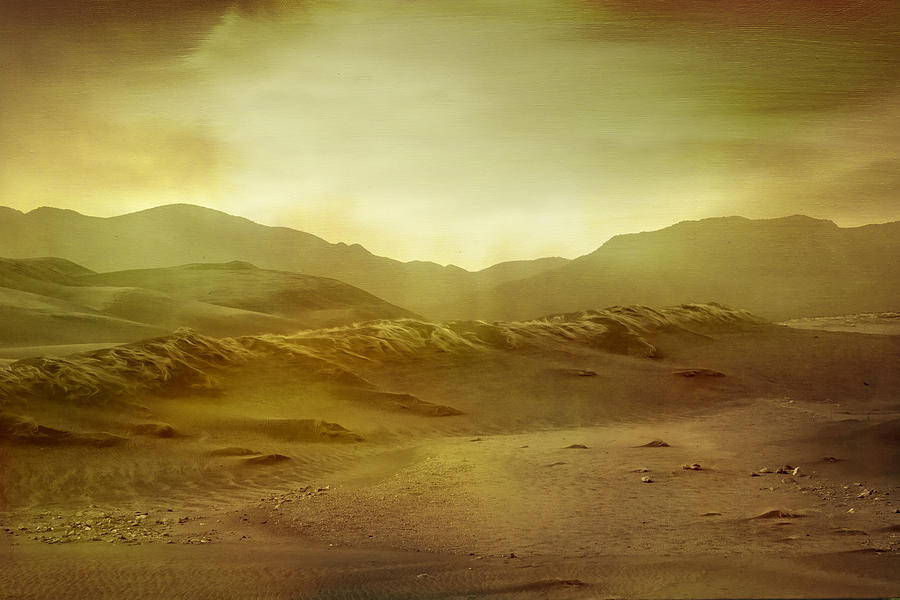 Desert Digital Art