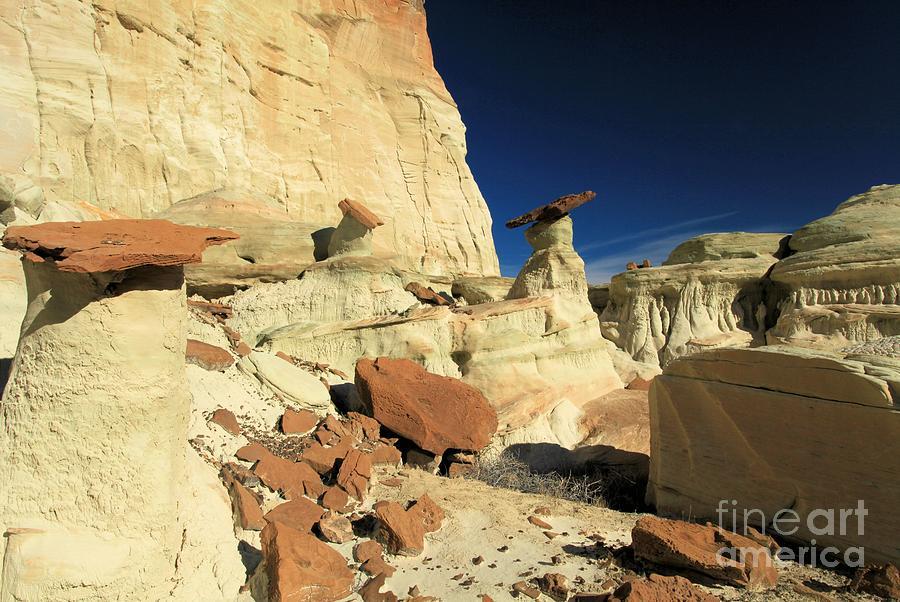 Wahweap Hoodoos Photograph - Desert Decorations by Adam Jewell