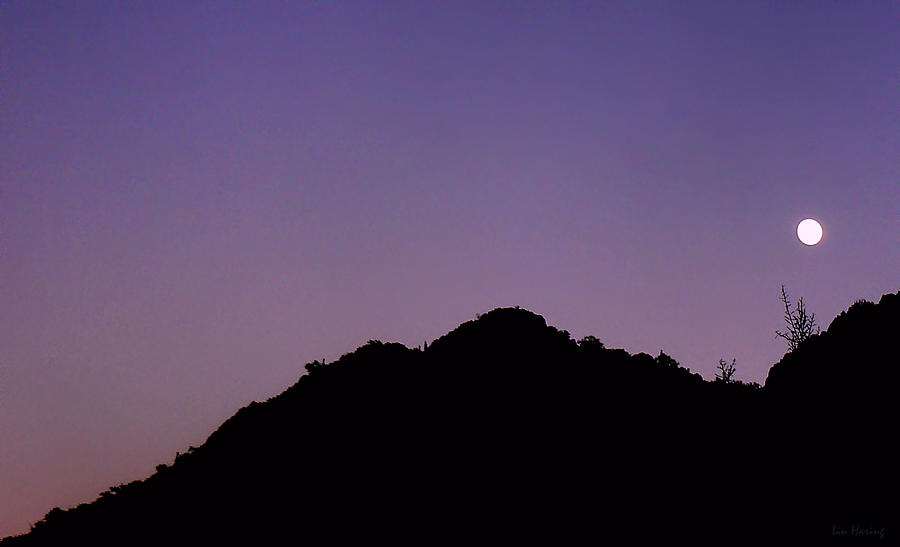 Desert Moonrise  Photograph