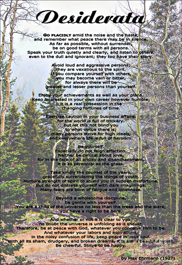 Desiderata Mountain Forest Photograph  - Desiderata Mountain Forest Fine Art Print
