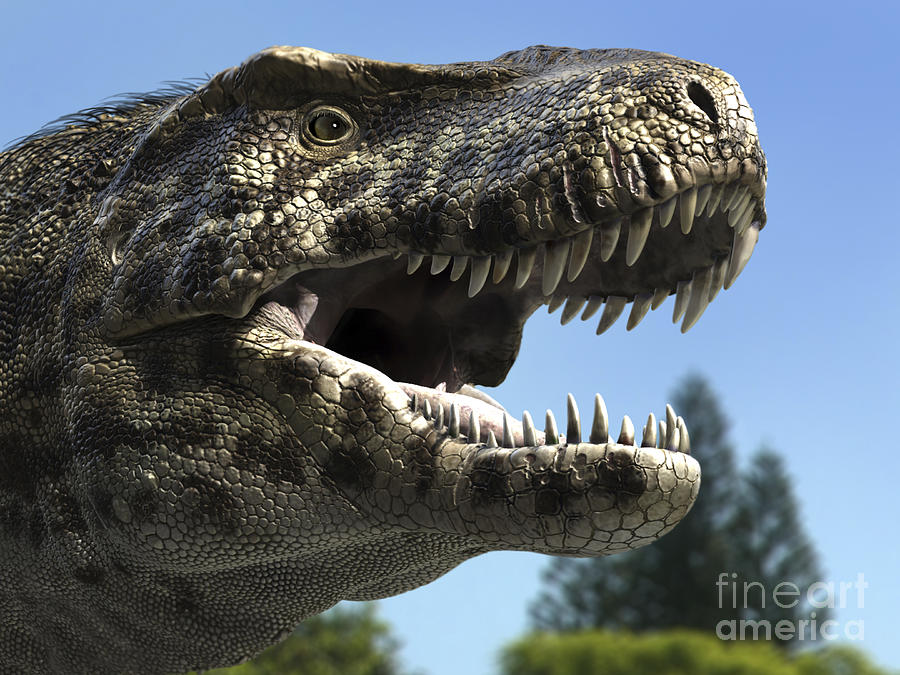 Detailed Headshot Of Tyrannosaurus Rex Digital Art  - Detailed Headshot Of Tyrannosaurus Rex Fine Art Print