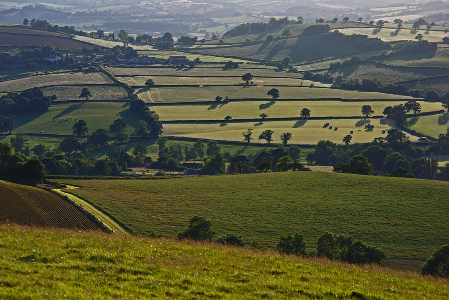 Devonian Tapestry Of Fields Photograph