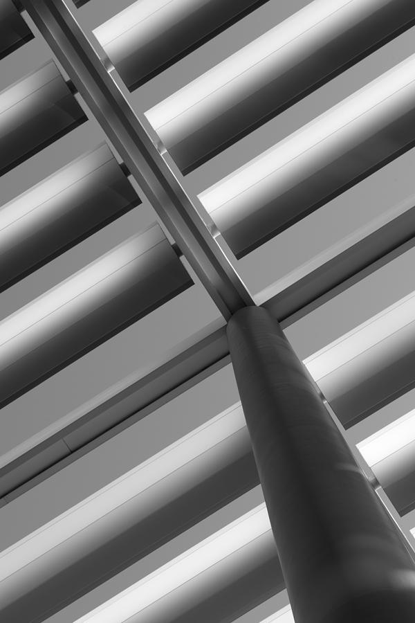 Diagonal Photograph - Diagonal Lines by Darryl Dalton