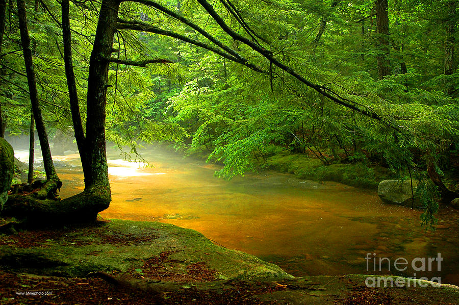Dianas Bath Stream Photograph  - Dianas Bath Stream Fine Art Print