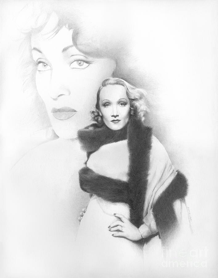 Celebrity Drawing - Dietrich by TPD Art