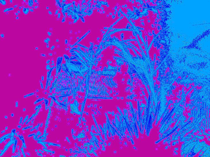 Digital Visual Digital Art
