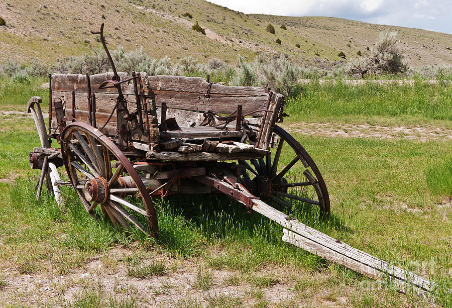 Dilapidated Wagon With Leaning Wheels Photograph  - Dilapidated Wagon With Leaning Wheels Fine Art Print