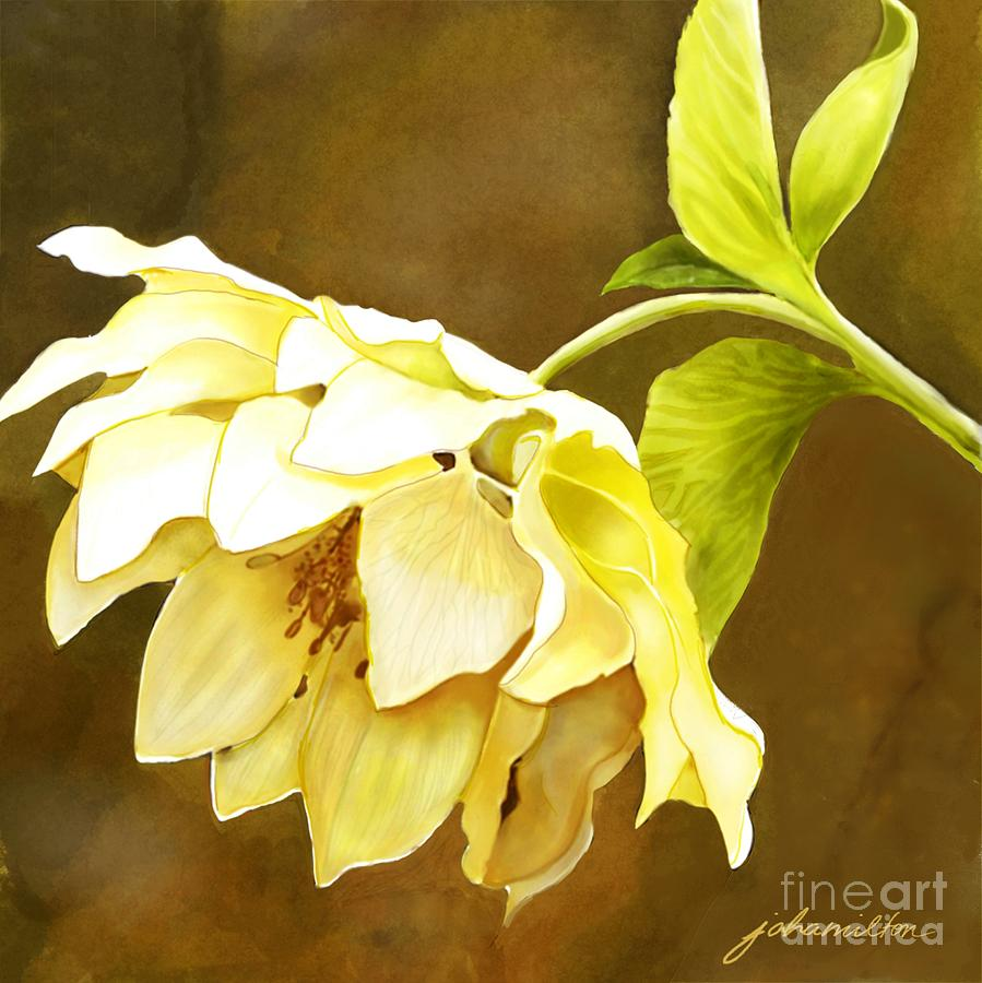 Cream Hellebore Painting - Dip Anyone? by Joan A Hamilton