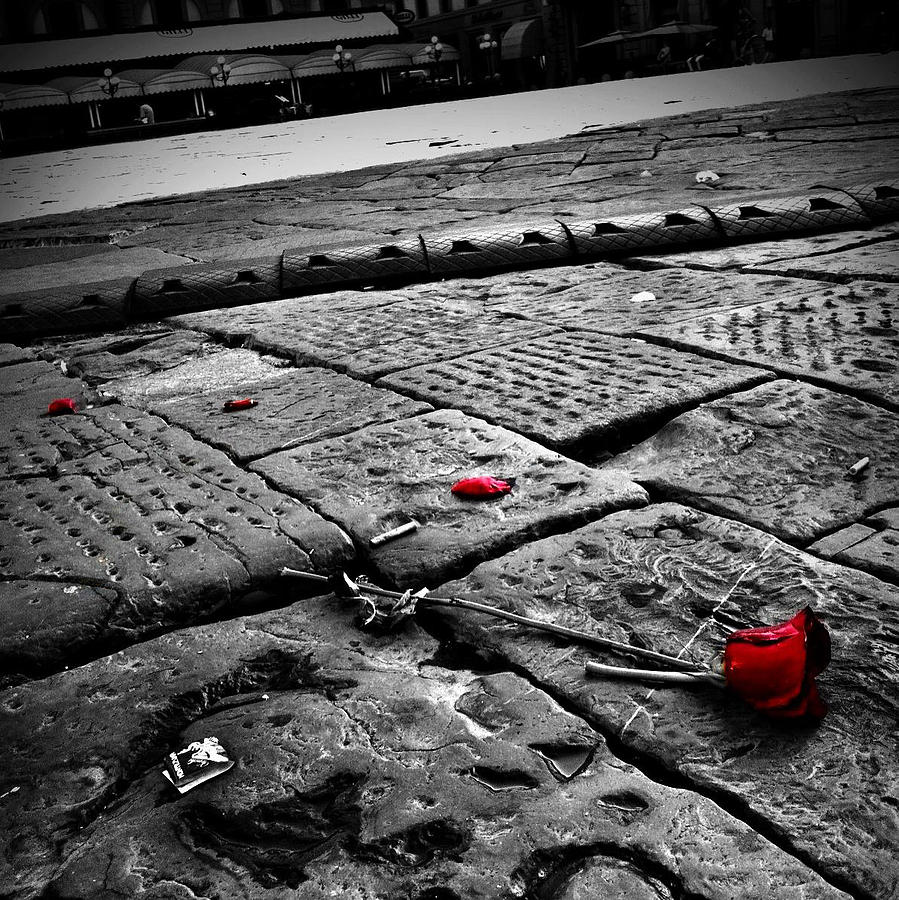 Discarded Roses Photograph  - Discarded Roses Fine Art Print